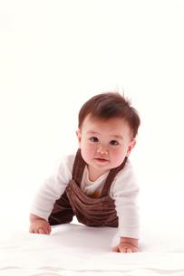 ハイハイする赤ちゃんの写真素材 [FYI03947917]
