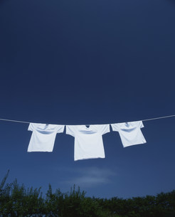 干された3枚のTシャツと青空の写真素材 [FYI03947940]