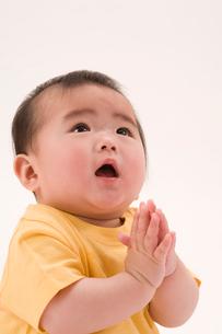 上を見上げて手をたたく赤ちゃんの写真素材 [FYI03947944]
