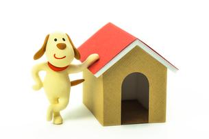 犬と犬小屋の写真素材 [FYI03948339]
