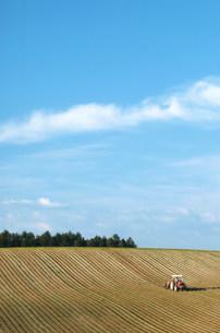 丘と空の写真素材 [FYI03948731]
