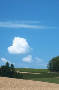丘と空の写真素材 [FYI03948734]