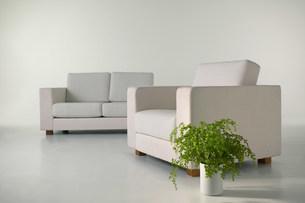 二つのソファーのある空間の写真素材 [FYI03948924]