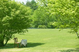 木陰の椅子とテーブルの写真素材 [FYI03948934]