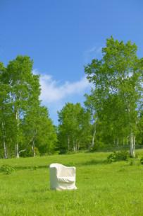 草原の中の白い椅子の写真素材 [FYI03948941]