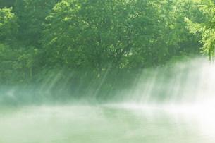 五色沼の写真素材 [FYI03949215]