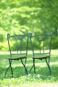 芝の上に椅子2脚の写真素材 [FYI03949449]