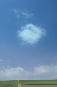 空と雲と平原の写真素材 [FYI03949566]