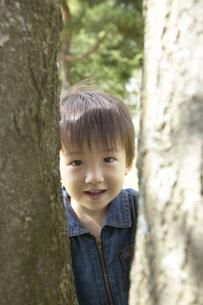 木の間から顔を出す男の子の写真素材 [FYI03950051]