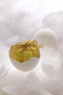 白い羽と卵のプレゼントの写真素材 [FYI03950159]