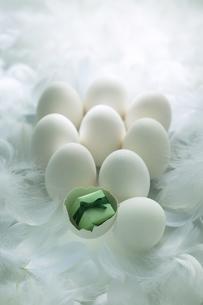 卵とプレゼントの写真素材 [FYI03950166]
