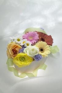 花のギフトイメージの写真素材 [FYI03950173]