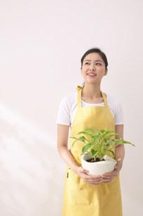 観葉植物を持つ女性の写真素材 [FYI03950353]