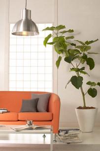 赤いソファーのある部屋の写真素材 [FYI03951483]