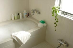 バスルームの写真素材 [FYI03951709]