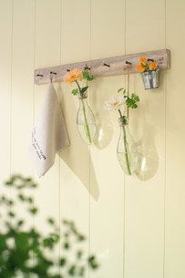 壁にかかる花器の写真素材 [FYI03951720]