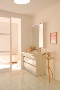 洗面所の写真素材 [FYI03951733]