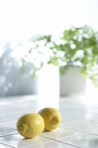 二つのレモンの写真素材 [FYI03951998]