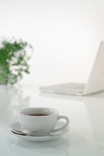 窓辺のテーカップの写真素材 [FYI03952011]