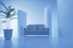 白いソファーの青い空間の写真素材 [FYI03952124]