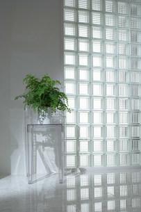 明るいガラスの壁の写真素材 [FYI03952198]