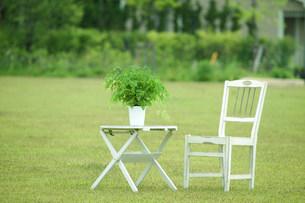 芝生の白い椅子とテーブルの写真素材 [FYI03952269]