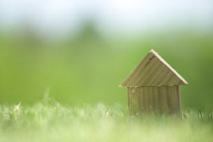 芝生の上のクラフトの写真素材 [FYI03952273]