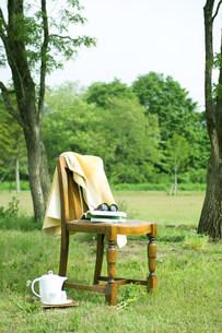 木陰の中の椅子の写真素材 [FYI03952304]
