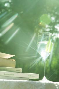 日差しで光るグラスの写真素材 [FYI03952321]
