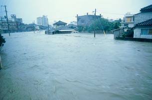 台風の写真素材 [FYI03952527]