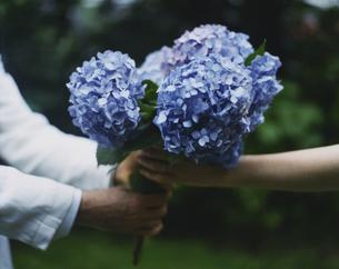 外国人女性に花を手渡す外国人男性の写真素材 [FYI03952686]