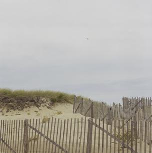 ケープコッドの砂浜の写真素材 [FYI03953210]