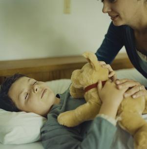 ぬいぐるみを抱いて寝る少年と寄り添う母の写真素材 [FYI03953295]