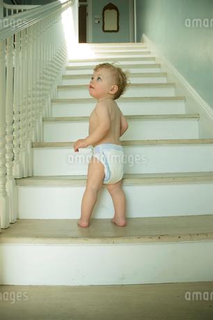 階段にいる男の子の写真素材 [FYI03953399]