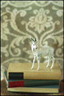 本の上に置かれたヤギの置物の写真素材 [FYI03954242]