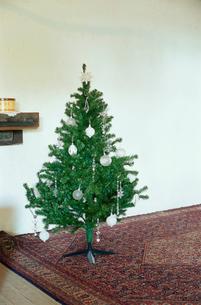 クリスマスツリー全体像の写真素材 [FYI03954262]