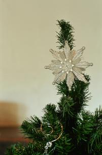 クリスマスツリートップの写真素材 [FYI03954263]