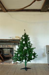 暖炉脇にあるクリスマスツリーの写真素材 [FYI03954273]