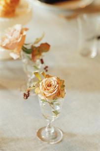 グラスに活けられた花の写真素材 [FYI03954331]