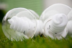 芝生の上に並べられたエコ電球の写真素材 [FYI03954361]
