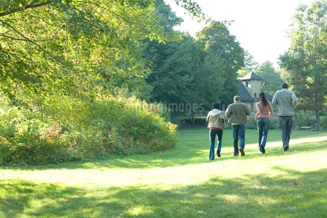 公園を歩くカップル2組の後ろ姿の写真素材 [FYI03954613]