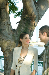 木のそばで談笑するカップルの写真素材 [FYI03954704]