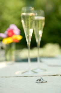 シャンパンが入ったグラスの写真素材 [FYI03954741]