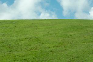 青空と芝の写真素材 [FYI03955094]