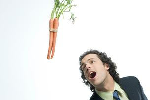 人参に食いつこうとするビジネスマンの写真素材 [FYI03955211]