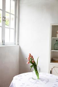 花瓶に活けられたピンクのチューリップの写真素材 [FYI03955590]