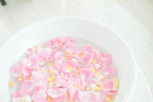 花びらが入った洗面器の写真素材 [FYI03955703]
