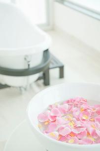 花びらが入った洗面器の写真素材 [FYI03955704]