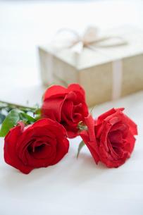 薔薇とギフト箱の写真素材 [FYI03955719]