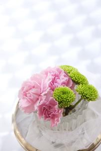 グラスに活けられたピンクの花の写真素材 [FYI03955775]